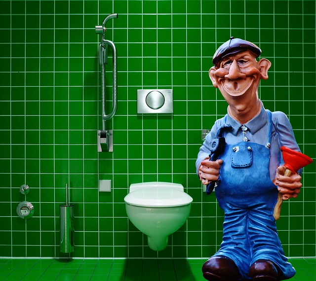 instalatér u wc.jpg